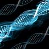 La prova del DNA all'interno dell'Ordinamento giuridico italiano